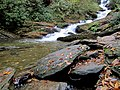 Roaring Fork Falls Black Mountain Campground Pisgah Nat Forest NC 4349 (37238370234).jpg