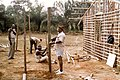 Robert Brumter - Gabon 53.jpg