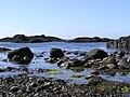 Rocky shoreline, Ballintoy - geograph.org.uk - 1339373.jpg
