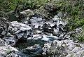 Rogue River-Siskiyou National Forest, Elk Creek (36275278584).jpg