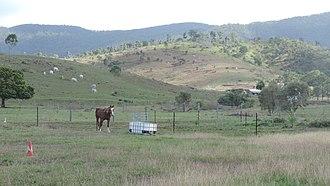 Mount Chalmers, Queensland - Rural landscape, Mount Chalmers, 2016