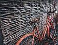 Rusted bicycle (Unsplash).jpg