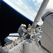 STS-51-D flyswatter on RMS