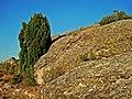 Sabina - panoramio.jpg