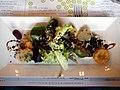 Salat af beder med artiskok, sprøde løg og creme af gedeost og sommertrøffel (5833096845).jpg