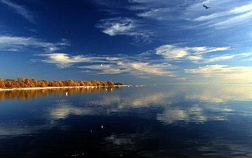 Salton Sea in the Coachella Valley. Salton Sea Reflection.jpg