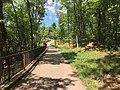 Sandstone Canyon Trail Don Robinson State Park 3.jpg