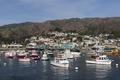 Santa Catalina Island, a rocky island off the coast of California LCCN2013634826.tif