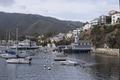 Santa Catalina Island, a rocky island off the coast of California LCCN2013634896.tif