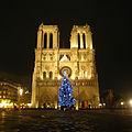 Sapin de Noël parvis de Notre-Dame.jpg