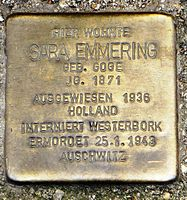 Sara Emmering.jpg