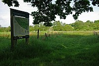 Sawbridgeworth Marsh - geograph.org.uk - 1307690.jpg