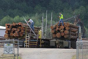 Log scaler -  Ramp Scale at Mist, Oregon