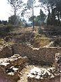 Scavi archeologici sul Monte Bonifato (Alcamo) 04.jpg