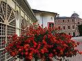 Schloss Favorite - RASTATT - panoramio (8).jpg