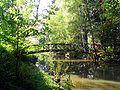 Schwalm Schlosspark Loshausen.jpg