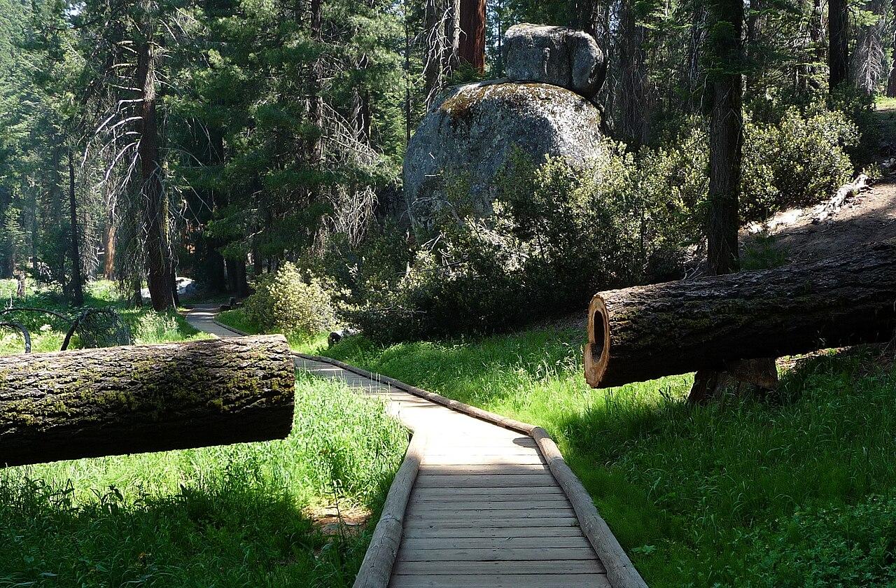 Big Tree Park With Hotel Rooms In Nebraska