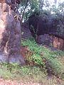 Serra da tocaia Rodeador MG - panoramio.jpg