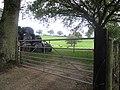Sheep Bales and gate at Tan y Clawdd - geograph.org.uk - 1507109.jpg