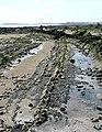 Shore at Powillimount - geograph.org.uk - 1393415.jpg