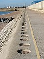 Shoreham Harbour Sea Wall and The Monarch's Way - geograph.org.uk - 1013373.jpg
