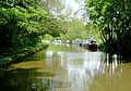 Shropshire Union canal near Cheswardine, Shropshire - geograph.org.uk - 1588999.jpg