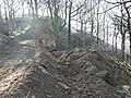 Site track at the landslip, Reins Wood, Rastrick - geograph.org.uk - 696920.jpg