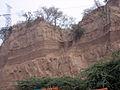 Siwalik sandstone complex.jpg
