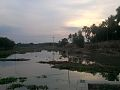 Some Jut are prepearing to next part by part of nacheral side. In Nilkuthi side area, Meherpur, Bangladesh.jpg