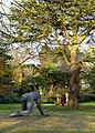 Sophie Ryder sculpture and cedar tree - geograph.org.uk - 1102739.jpg