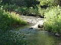 Spanish Fork river from Spanish Fork River Trail 3, Jul 15.jpg