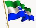 Ssf flag (1).jpg