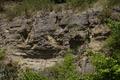 Steinau an der Strasse Steinau Weinberg SCI 555520970 Limestone outcrop.png