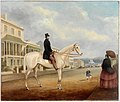 Stephen Butts on a white horse, Macquarie Street, Sydney, ca. 1850 (painted by Joseph Fowles).jpg