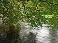 Still runs the river - geograph.org.uk - 1012236.jpg