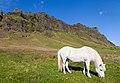 Storhofthi, Suðurland, Islandia, 2014-08-17, DD 122.JPG