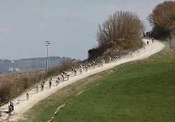 Strade Bianche 2014 (13504915215).jpg