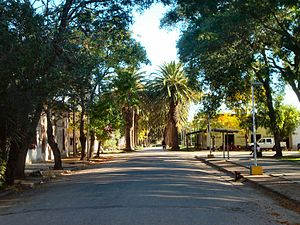 San Antonio, Canelones - Marcelino-Moreira street, San Antonio, Canelones