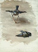 Studies of a Dead Bird MET ap50.130.23.jpg