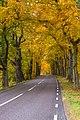 Sundbyholm Reserve.jpg