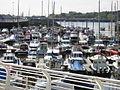 Sunderland Marina 1.jpg