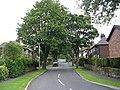 Sunnyridge Avenue - geograph.org.uk - 492897.jpg