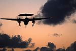 Sunset landings aboard the USS Ronald Reagan DVIDS128057.jpg