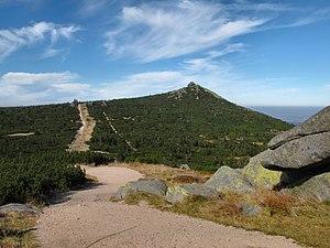 Szrenica - Photo of the summit