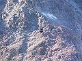 Télécabine Panoramic Mont-Blanc vue 7 depuis pointe Helbronner (3 466 m).JPG