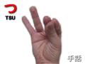 TSU-jsl-yubimoji.png