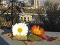 Tabriz - panoramio.jpg
