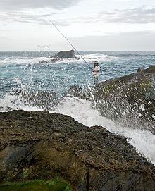 Taiwan 2009 East Coast ShihTiPing Giant Stone Steps Fishing FRD 6627.jpg