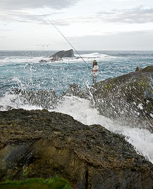 image of Taiwan 2009 East Coast ShihTiPing Giant Stone Steps Fishing FRD 6627