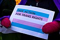 Take Action for Trans Rights (31956900177).jpg
